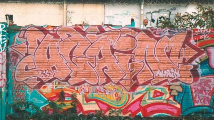 zeb_sans-titre-7
